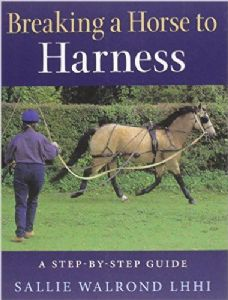 Breaking a Horse to Harness by Sallie Walrond